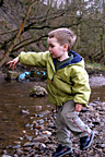 Throwing rocks in Eagley Brook